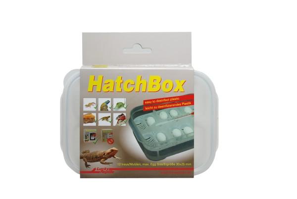 Lucky Reptile Hatch Box, Brutdose ca. 20x11 cm