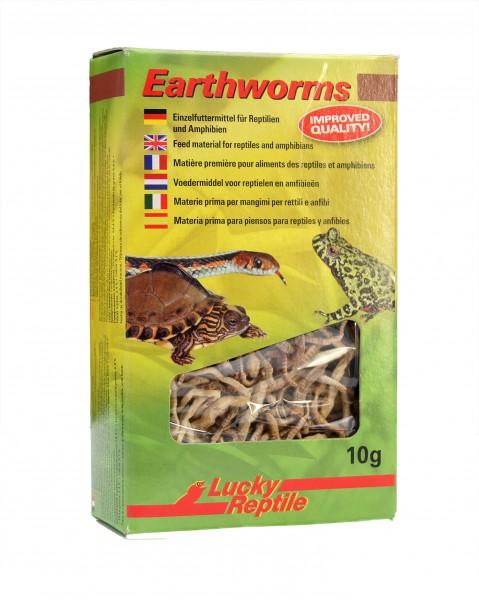 Lucky Reptile Earthworms 10g, getrocknete Regenwürmer