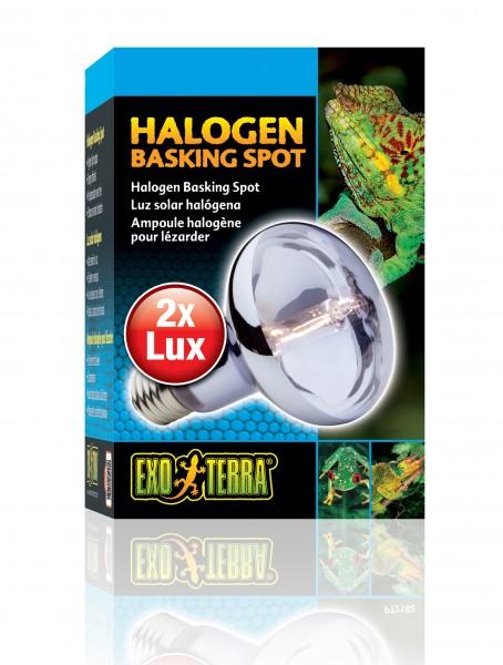 Exoterra Halogen Basking Spot