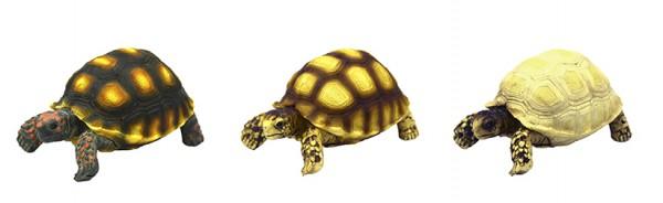 Hobby künstliche Schildkröte 10 x 6 x 5 cm