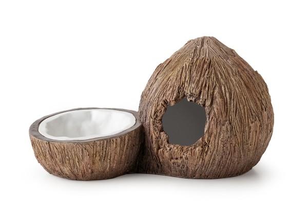 Exoterra Coconat Hide Höhle & Wasserschale, 20x11x11, Loch 4x4
