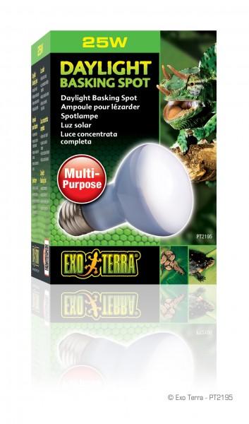 Exoterra Daylight Basking Spot