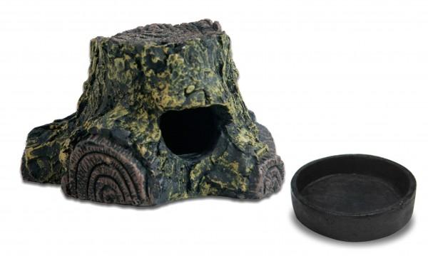 Frog Cave & Ersatzschalen