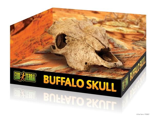 Exoterra Büffel Skull, Rinderschädel