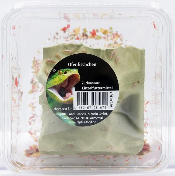 Ofenfischchen Dose 0,5 Liter