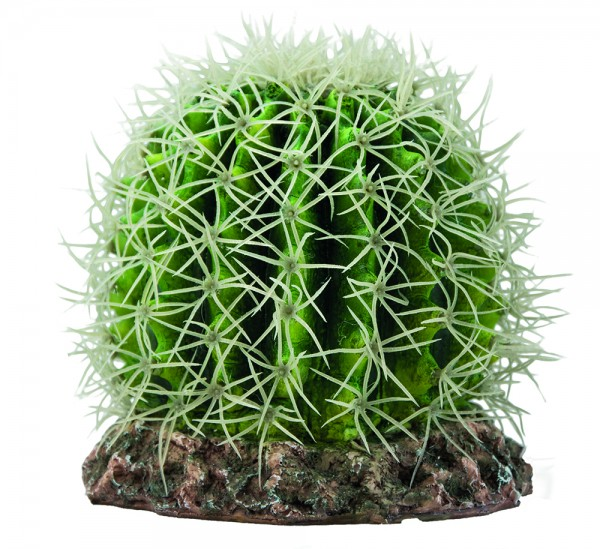 Hobby Kaktus Sonora M 15 x 15 x 13 cm