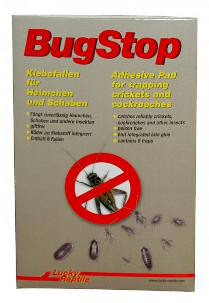 Lucky Reptile Bug Stop - Heimchen Klebefalle, 6 Stück